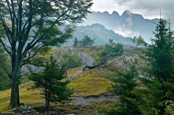 AL038 - Alpi Liguri