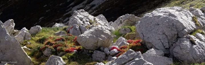 AL128 - Alpi Liguri