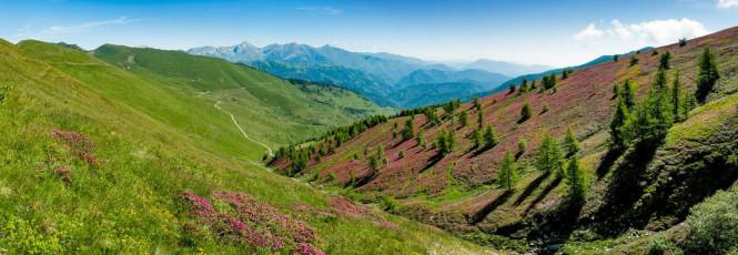 AL278 Monesi Plateau Alpi Liguri