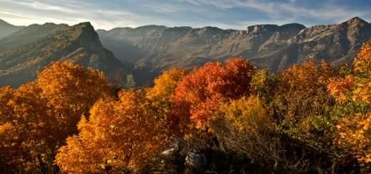 Autunno in Val Tanaro